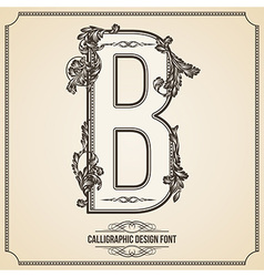 Calligraphic font Letter B vector