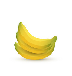 Colorful banana fruits on white background vector