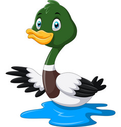 cute cartoon mallard duck waving vector image