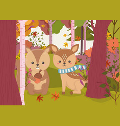 cute deer and squirrel with acorn hello autumn vector image