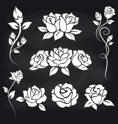 Decorative roses on chalkboard vector