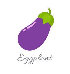 eggplant icon with title vector image