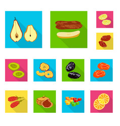 isolated object of fruit and dried sign vector image
