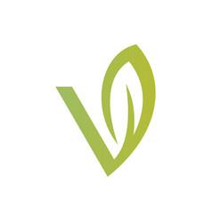 letter v green leaf logo vector image