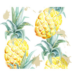 pineapple pattern watercolor tropic fruits vector image