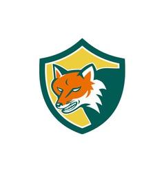 Red Fox Angry Head Shield Retro vector image
