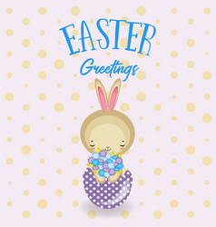 set of cute easter bunny easter eggs flowers vector image