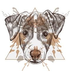 Sketch Hipster Jack Russel Terrier face in vector image