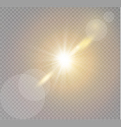 transparent sunlight vector image