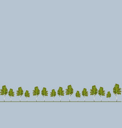 wallpaper tree pine background vector image