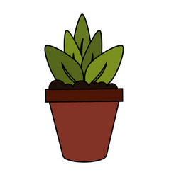color image cartoon plant in pot decorative vector image