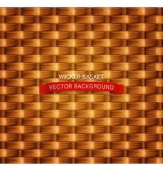 texture Wicker basket vector image