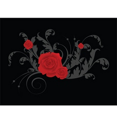valentine roses vector image vector image
