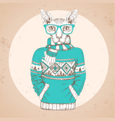 Animal sphynx cat dressed up in pullover vector