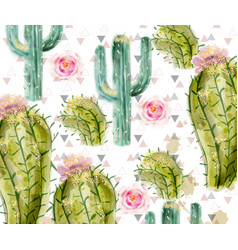 cactus pattern watercolor summer exotic vector image
