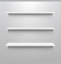 empty shelves for exhibit vector image