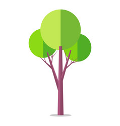 flat tree icon isolated on white vector image