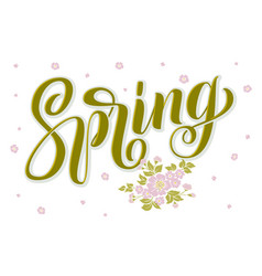 hand drawn lettering spring with shadow and vector image