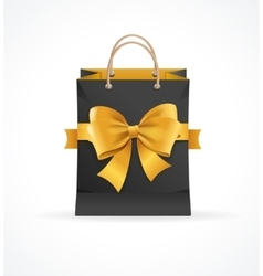 Paper Bag and Ribbon Present Concept vector image
