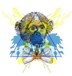 Sketch Hipster Monkey with bow tie in triangle vector image
