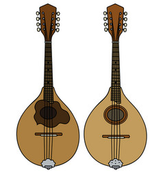 two classic mandolins vector image vector image