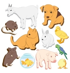 Animals pets colorful icons set vector image vector image