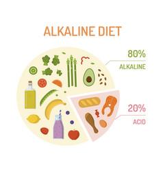 Alkaline diet pie chart vector