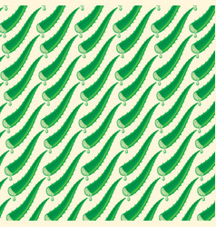 background pattern with aloe vera leaf with drops vector image