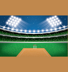 Cricket stadium with neon lights arena vector