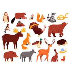 cute animals cartoon forest animals bear raccoon vector image