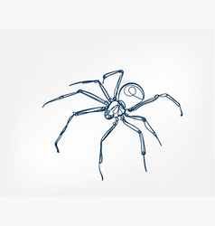 spider art line isolated doodle vector image