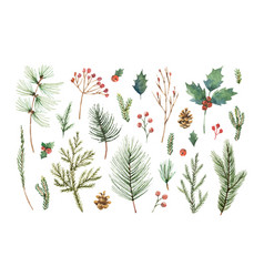 Watercolor christmas set with evergreen vector