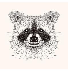 Sketch liner raccoon Hand drawn in doodle style vector image vector image