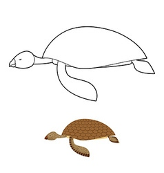Water turtle coloring book Marine animal with vector image