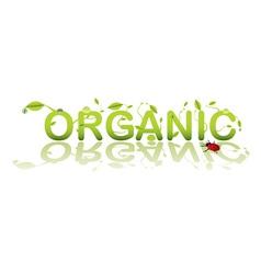 organic shop vector image vector image