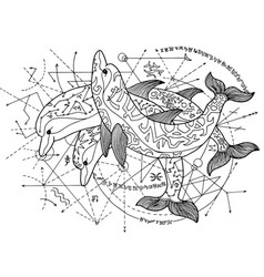design with three dolphins vector image