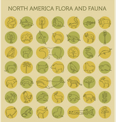 Flat north america flora and fauna elements vector
