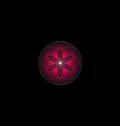 flower life symbol sacred geometry gold purple vector image