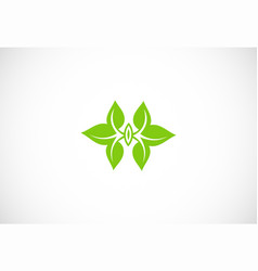 green leaf ornament logo vector image