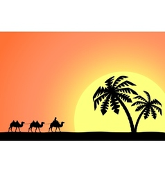 Man on the camel in palm trees at sunset vector image