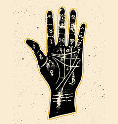 palmistry hand on a white background vector image