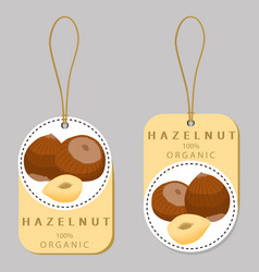The theme nuts vector