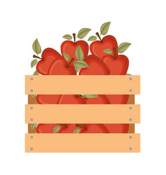 wooden basket with apples in colorful silhouette vector image