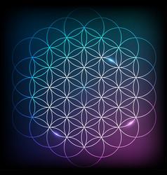 watercolor sacred geometry vector image