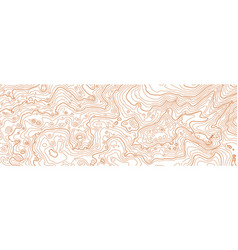 abstract topographic map on white vector image