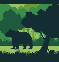 bear in the jungle vector image