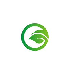 green leaf round eco logo vector image