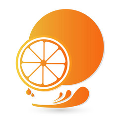 Orange fruit splash icon vector