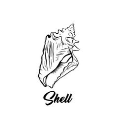 sea shell black ink vector image