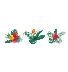 tropical hawaii flower bouquet set vector image